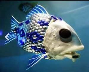 Weird deep sea creature | Rare Sea Creatures | Pinterest