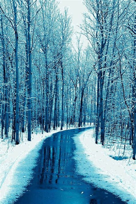 Snow Wallpaper Iphone Hd by Forest Road Wallpaper Snow Winter Iphone Wallpaper