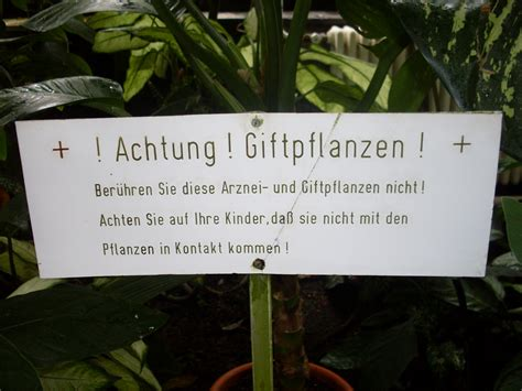 Botanischer Garten Jena Geschichte by Wissenschaft F 252 R Kinder Der Botanische Garten In Jena