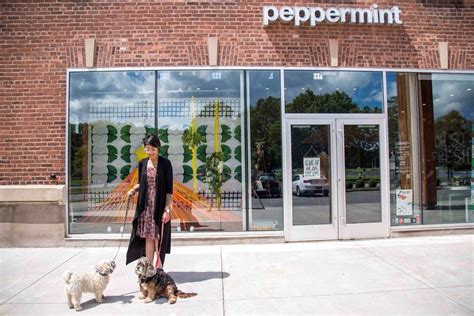 Peppermint Boutique still open; offering social media ...