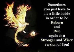 Pinterest • T... Phoenix Bird Tattoo Quotes