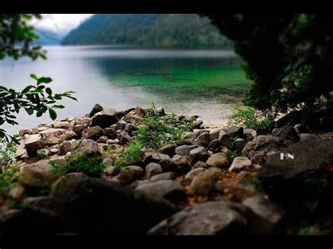 Magnifique Forêt Rivière Et Cascade  Relaxation Etude