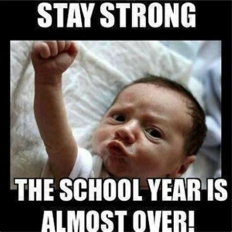Last Week Of School Meme - 24 funny pictures that all teachers can relate too