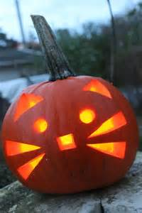 is pumpkin for cats best 25 pumpkin carvings ideas on