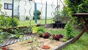 Gardena Bewässerungssystem Anleitung : gardena bew sserungssystem youtube ~ A.2002-acura-tl-radio.info Haus und Dekorationen