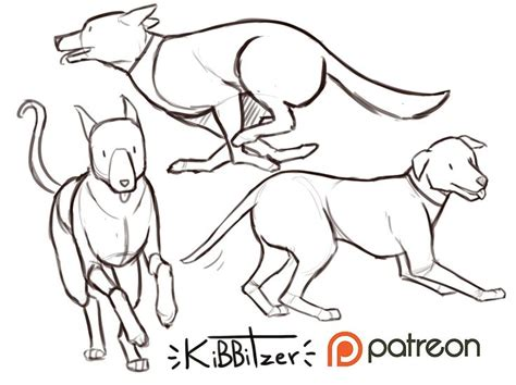 dogs reference sheet preview kibbitzer  patreon