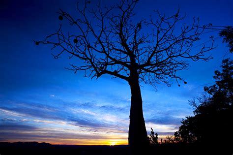days darwin kakadu  kimberley  broome