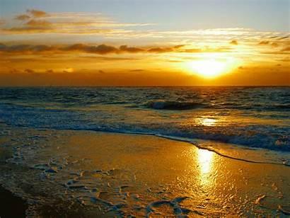 Surf Golden Playa Wallpapers Locos Fondos Backgrounds