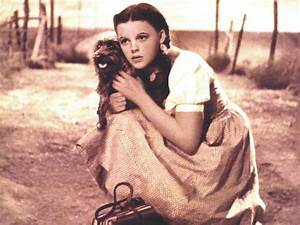 Toto (The Wizard of Oz) images Dorothy and dear Toto HD ...