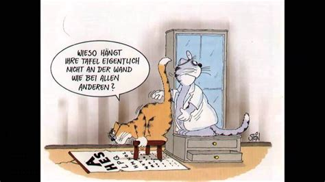 katzen cartoon uli stein youtube