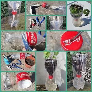 Bewässerungssystem Für Zimmerpflanzen : bew sserungssystem pet flasche ideal f r die aussaat und den urlaub ~ Markanthonyermac.com Haus und Dekorationen