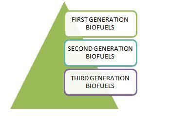 biofuel types uses exles studiousguy