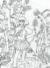 Bamboo Coloring Pages Tree Getdrawings Printable Getcolorings sketch template