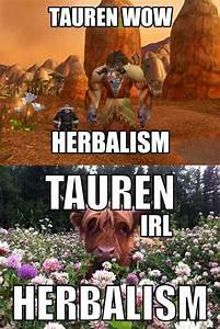 Funny World of ... Warcraft Tauren Chieftain Quotes