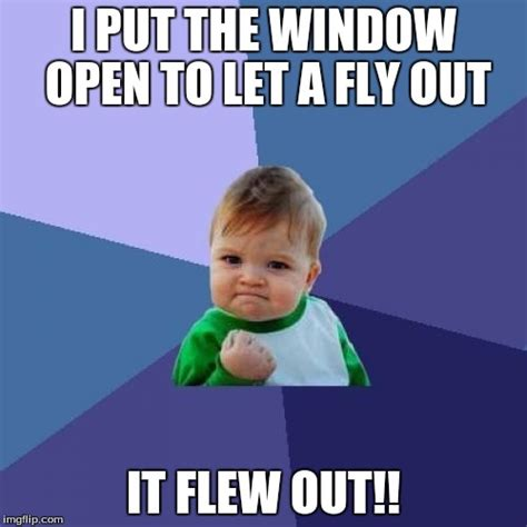 Fly Out Memes - success kid meme imgflip