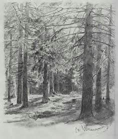 drawing trees leaves images pencil drawings