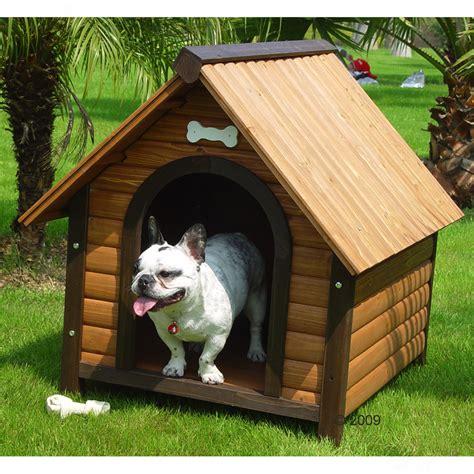 chambre de chien chambre pour chien