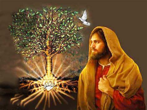 Renungan harian katolik hari ini pembacaan dari kisah para rasul : Bacaan, Mazmur Tanggapan dan Renungan Harian Katolik: Jumat, 29 Januari 2021 - Mirifica News
