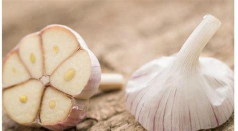 3 cara mempercantik kuku dengan bahan alami yuk dicoba