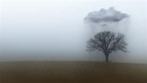 rain clouds trees landscape wallpapers hd desktop