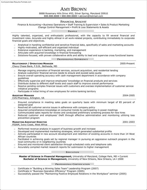 dot net technical lead resume things to put