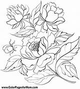 Coloring Peony Fabric Patterns Ink Outline Flowers Peonies Drawing Floral Embroidery Dibujos Flores Rosemaling Colourbox Vektor Colouring Fleurs Plant Tela sketch template
