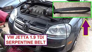 Vw Jetta Golf Bora Mk5 Mk4 Tdi 1 9 Pd Serpentine Belt