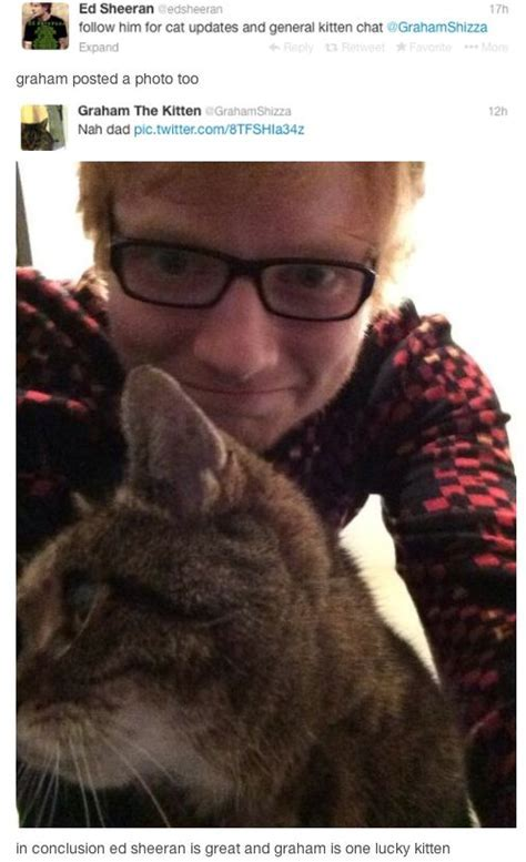 Reasons Ed Sheeran Needs To Win Best New Artist Grammy Celebrity Bae And Adorable Guys