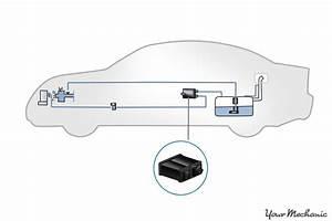 Dodge Avenger Evap System Diagram