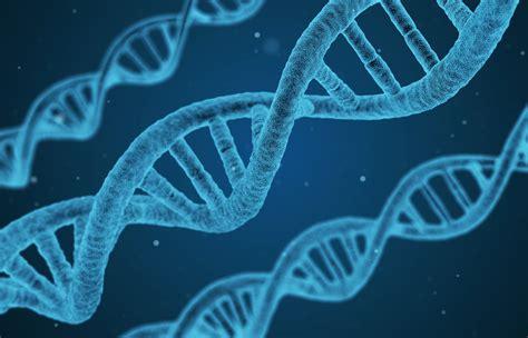 Biology for Non-Majors I   Lumen Learning