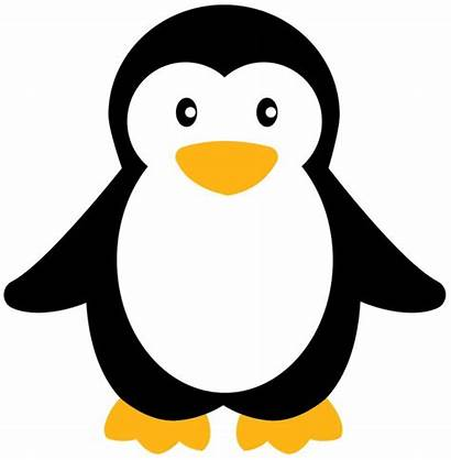 Penguin Clipart Penguins Clip Simple