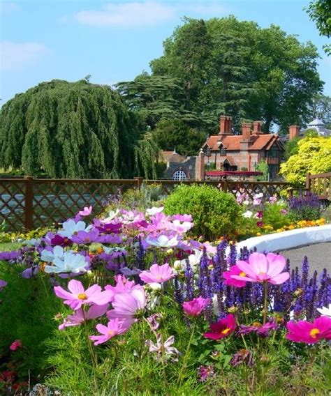 Pretty English Garden Pictures, Photos, and Images for