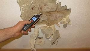 Wand Feuchtigkeit Messen : schimmel entfernen dauerhaft beseitigen raum analyse ~ Lizthompson.info Haus und Dekorationen