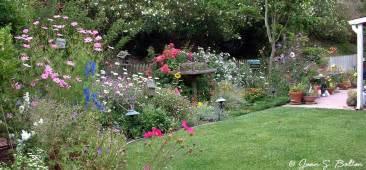 sunflowers design santa barbara garden design portfolio cottage garden