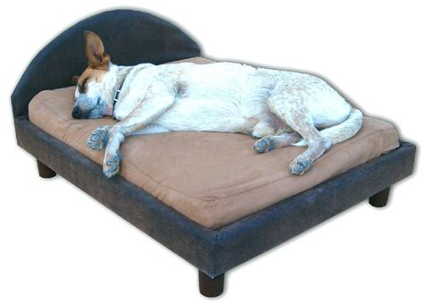 beds cute dog beds  sale small girl dogs amazon
