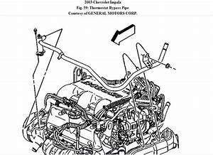 2003 Chevy Malibu Engine Diagram