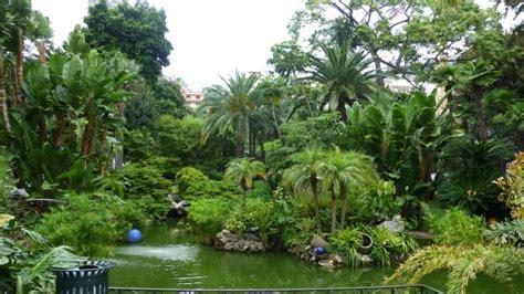 Zuviele Pflanzen Im Garten