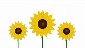 Create A Vector Flower - Photoshop Tutorial