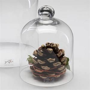 Ceranfeld Abdeckung Glas : glasabdeckung cover k seglocke glas glassturz abdeckung ~ Michelbontemps.com Haus und Dekorationen