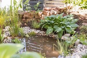 Teich Im Garten : mein kleiner teich im garten und ein gewinnspiel f r euch ~ Lizthompson.info Haus und Dekorationen
