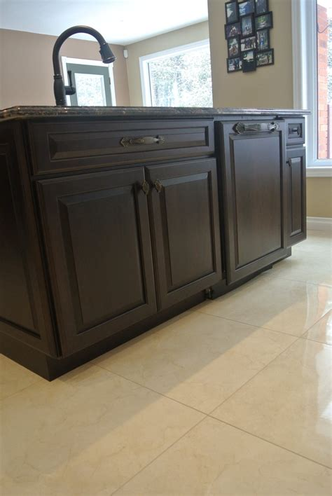 PANEL READY DISHWASHER  Kitchens Ontario