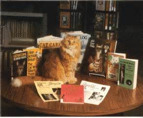 dewey the library cat dewey postcards spencer library