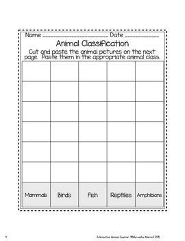 animal classification and animal characteristics sorts freebie animal classification animal