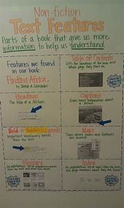 Top 25 Ideas About Informational Text On Pinterest