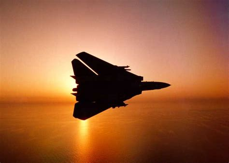 America Loves The F14 Tomcat  Raven's Paradox