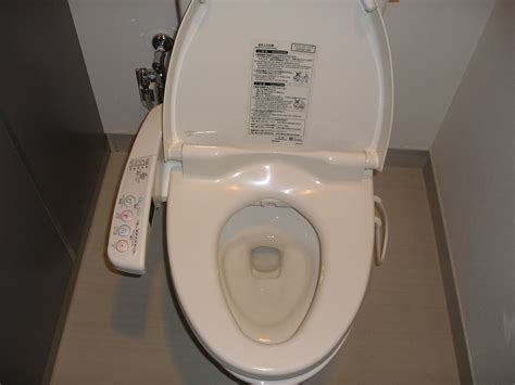 Japanese Bidet Toilets - squat sit or stand