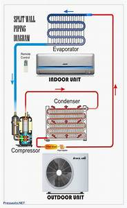Peugeot 406 Maintenance Wiring Diagram