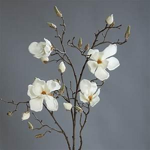 Zweige Weiß Ansprühen : magnolienzweig 110cm wei creme dp kunstblumen k nstliche magnolie blumen seidenblumen ~ Orissabook.com Haus und Dekorationen