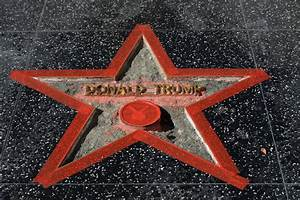 Trump's Hollywood Walk of Fame star vandalized, again ...