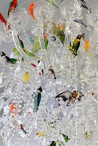 Classic Crystal Chandelier Filled with Flock of Colorful